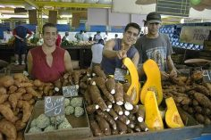Cuban-food-security
