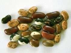 Rasta rice and beans