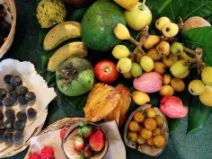 subtropical fruits