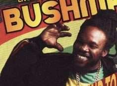 bushman reggae