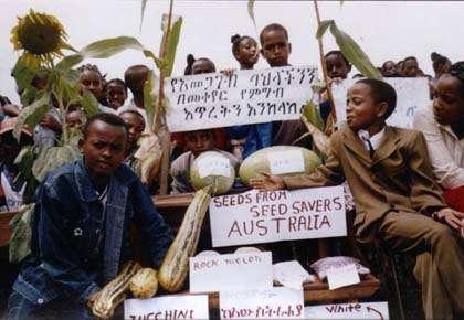 Rasta Seed Savers