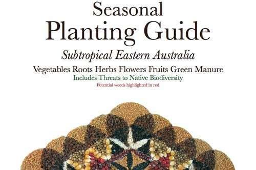 Seasonal Subtropical Planting Guide Mullumbimby Community Garden Loretta Faulkner Rasta Seed Blog