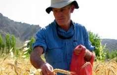 john-sheppard seed hunter