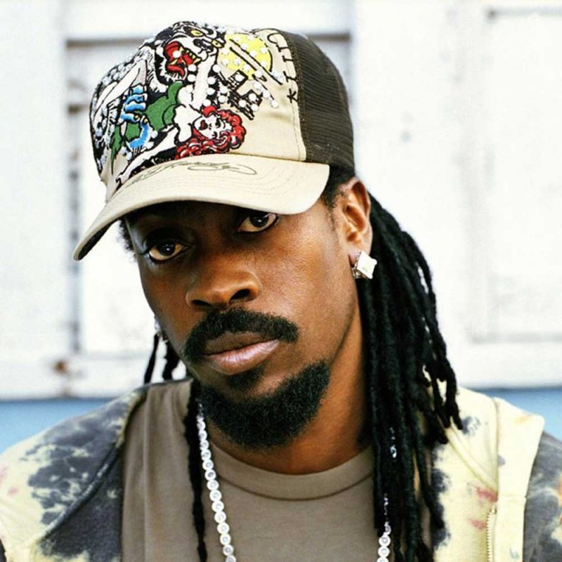 Beanie Man Sound System Dancehall Rasta Seed Reggae Music