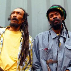 Israel Vibration Reggae Rastaseed.com Rastafarian merchandise clothing and blog