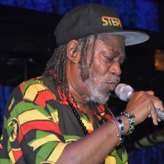 Horace Andy Reggae Rasta Seed Rastafarian Merchandise Clothing and Blog