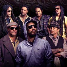 Katchafire New Zealand Reggae Rasta Seed Rasta Reggae Merchandise Clothing Music and Blog