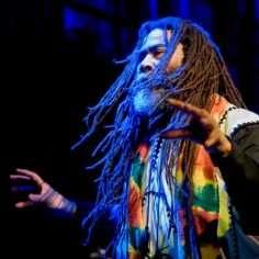 Twinkle Brothers Reggae Band Rastaseed.com Rastafarian Music merchandise clothing and medicine